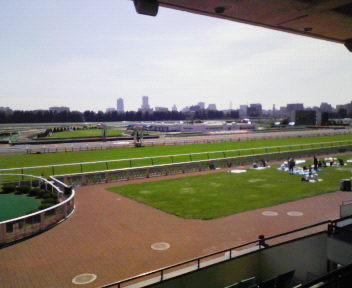 心は新潟競馬場です!