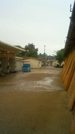 雨がね‥(<br />  ´ω`)