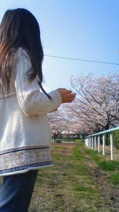 しばしお花見♪