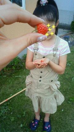 庭に出来てたイチゴを発見‥